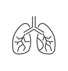 lungs related thin line icon vector image