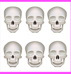 realistic human skulls set isolated 3d vector image