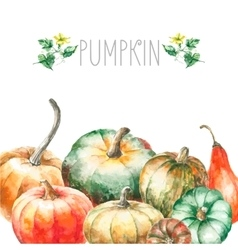 Watercolor pumpkin vector