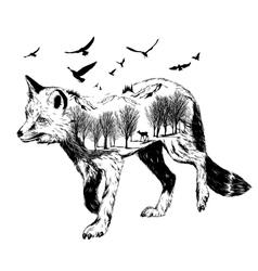Double exposure silhouette of fox wildlife concep vector image vector image