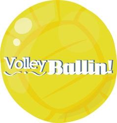 Volley Ballin vector image vector image