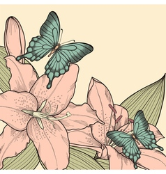 Background for card with butterflies lily leaves vector