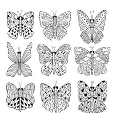 Black and white butterflies collection coloring vector