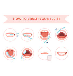 Brushing teeth kids hygiene tooth brushing vector