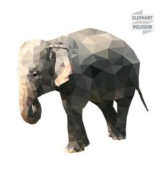 Elephant polygon vector image