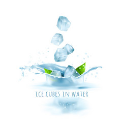 Ice cubes and green leaves vector