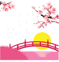 japan sakura bridge sunset pink background vector image