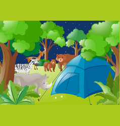 scene with tent and wild animals in forest vector image