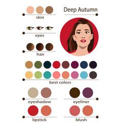 Seasonal color analysis palette for deep autumn vector