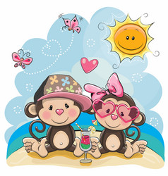 two monkeys on the beach vector image