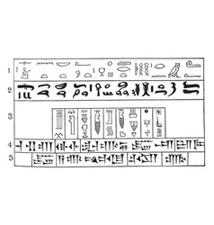Beginning of written language or hieroglyphics vector