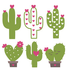 cactuses and succulents green with pink vector image