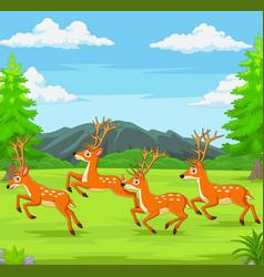 cartoon deers running in forest vector image