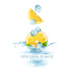 Fresh lemons and ice cubes vector