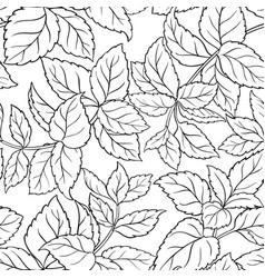melissa seamless pattern vector image