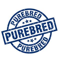 Purebred blue round grunge stamp vector