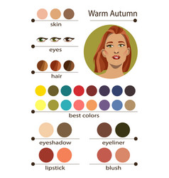 Seasonal color analysis palette for warm autumn vector