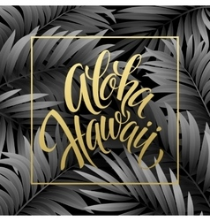 summer tropical background palm leaves vector image