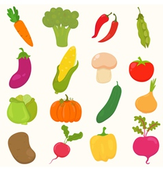 Vegetables healthy food vector image