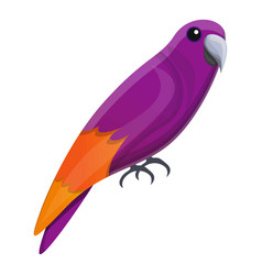 Violet parrot icon cartoon style vector