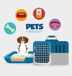 pet shop products set icons vector image