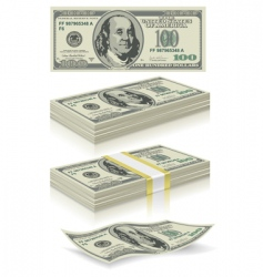set of dollar bank notes vector image vector image