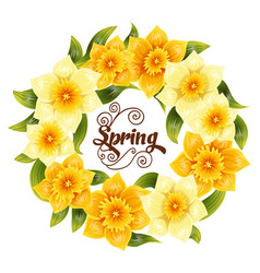 elegant background with yellow daffodil narcissus vector image vector image