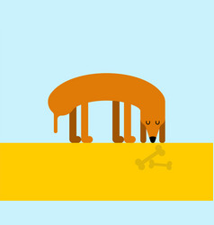 Dog looking bone home pet and part skeleton vector