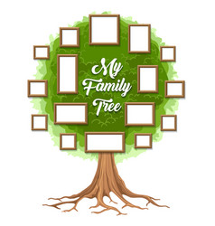 Green family tree with picture frames vector