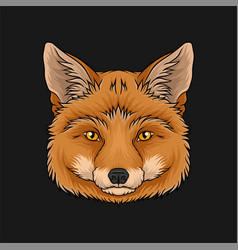 Head of red fox face of wild animal hand drawn vector