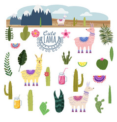 Set lama alpaca cacti drinks and decorative vector