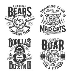 sport gym and fitness club t shirt prints quotes vector image