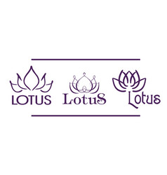 Three contour lotus logotypes for spa and yoga vector