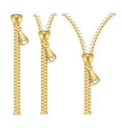 Golden Zip Set vector image