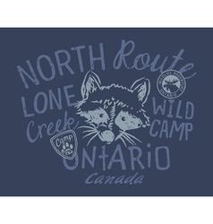 raccoon wild camp vector image