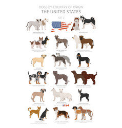 Dogs country origin dog breeds from the vector