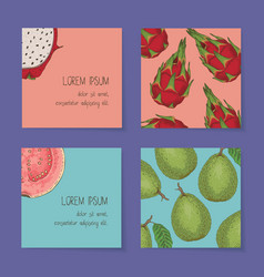 Fruit business cards template collection vector