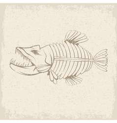 grunge design template of aggressive tropical fish vector image vector image
