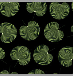 palm leaves on black background vector image