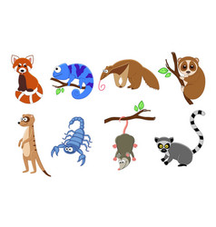 Set of 8 exotic animals in a cartoon style vector