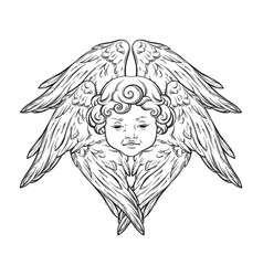 Six winged cherub cute winged curly smiling baby vector