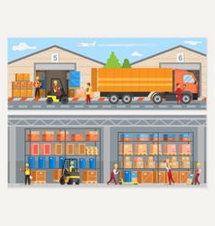 warehouse workers with boxes and trucks loaders vector image