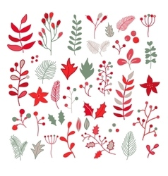 Christmas floral drawing set with holly vector image vector image