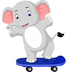 cute elephant skateboard cartoon vector image