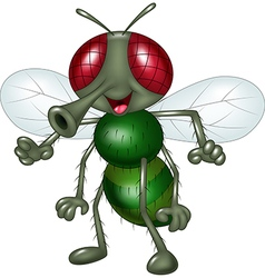 Cartoon happy fly isolated on white background vector image