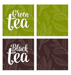 seamless pattern tea with branch and leaf vector image