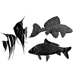 set of fish silhouettes vector image
