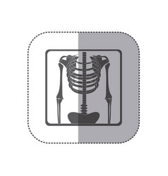 Sticker monochrome pictogram skeleton bones vector