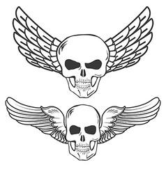Winged Skulls isolated on white background vector image