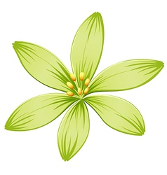 A green flower vector image